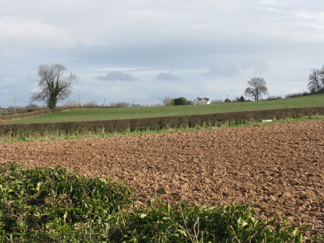 Fields South Of Moor Court Farm