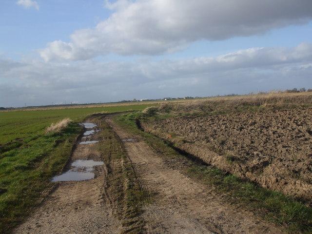 Lane to West Ings