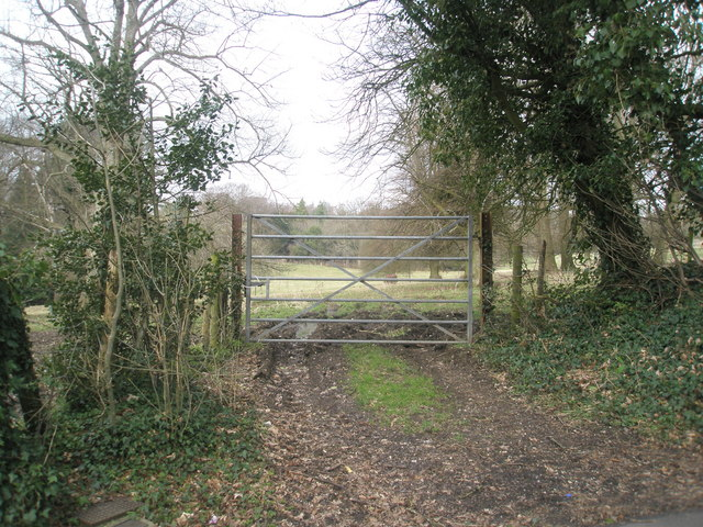 Gate entrance in Blendworth Lane