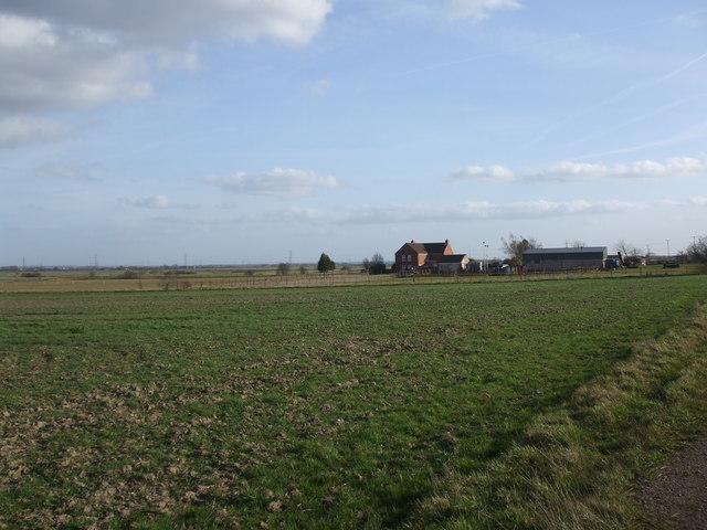Violet Hill Farm