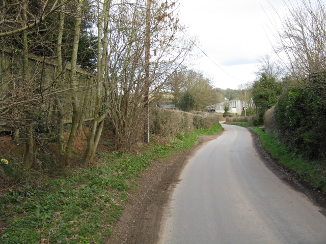 The Lane To Ullingswick
