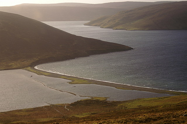 South Ayre, Dales Voe