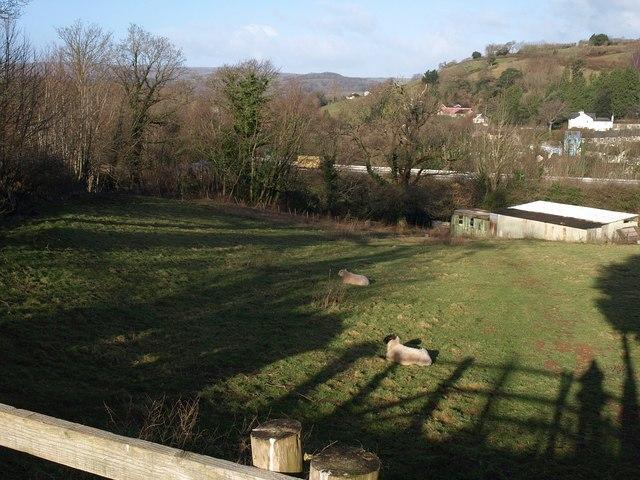 Field beside Chuley Hill