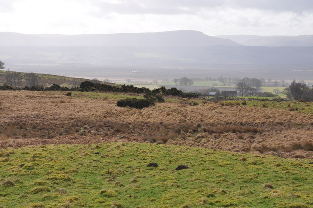 Looking South towards Ballanucater.