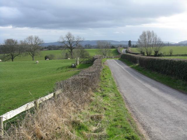 Lane To Wychend