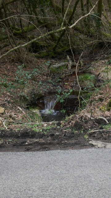 Stream runs off Woolbeding Common to go under Linch Road