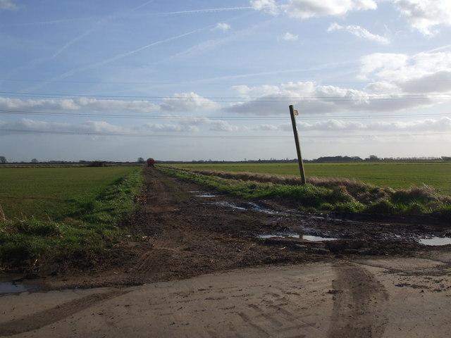 Bridleway to Bonnyhale Road
