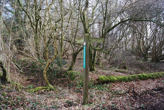 Signpost where Hanger Way leaves Old Litten Lane