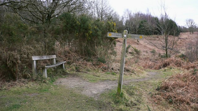 Signpost and seat on Older Hill