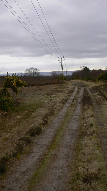 Track on Woolbeding Common following overhead cables