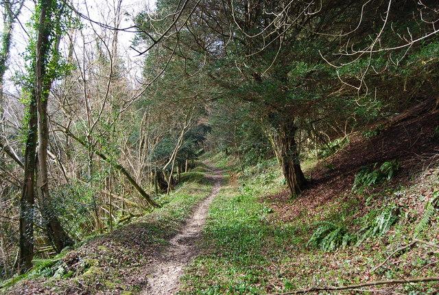 Footpath climbing Ashford Hill