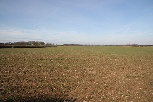 Brackenborough farmland
