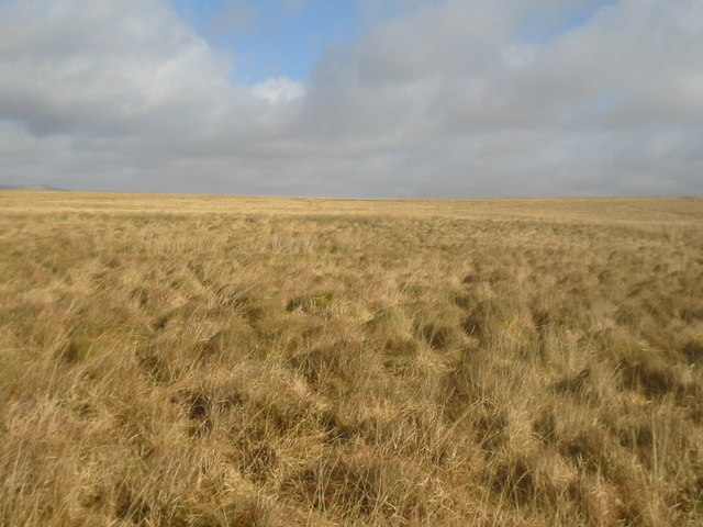 Open moorland near Boghead