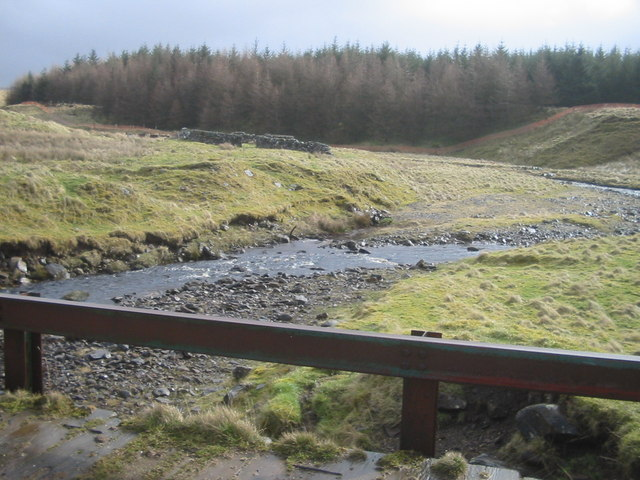 Glenmuir forest
