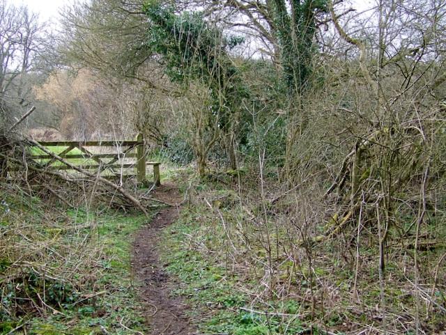 Footpath near Lawn