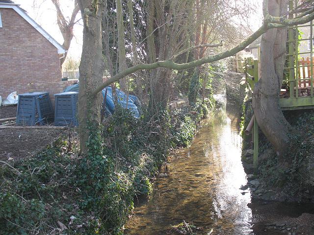 Stream in Turvey