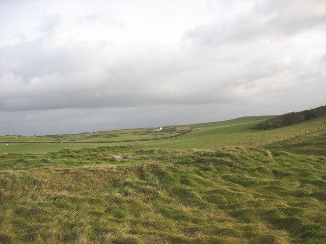 Rough grazing on Mynydd Bach