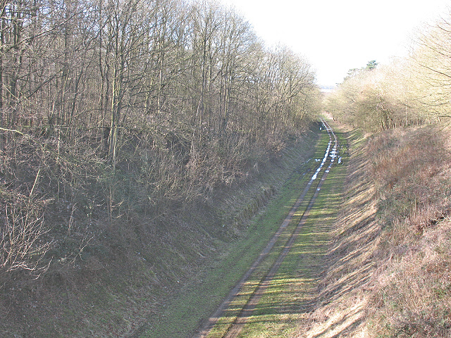 Old railway cutting through New Wood