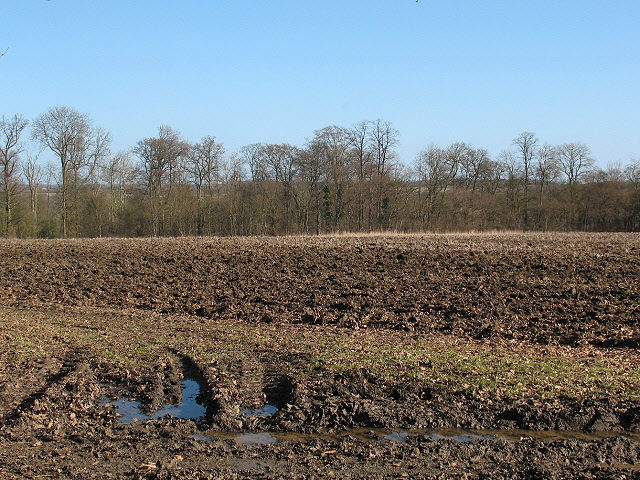 Ploughed field near Turvey