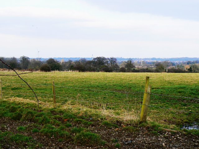 Farmland, Goodboys Lane, Grazeley Green