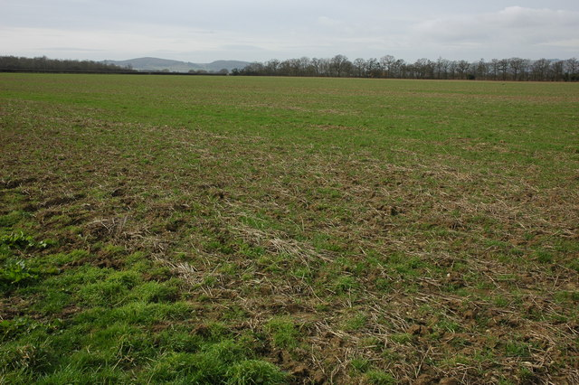 Farmland near Buckland