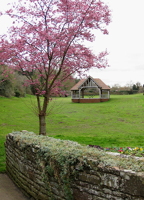 The bandstand with flowering cherry