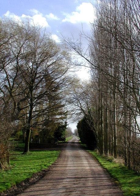Drove Lane