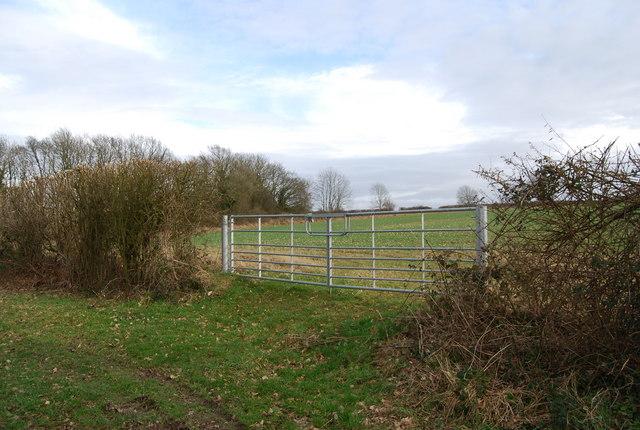 Gate into a field near Five Ash Farm