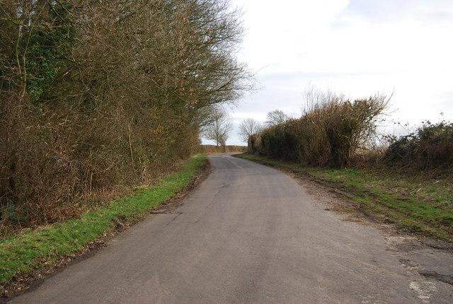 Warren Lane near Priors Dean