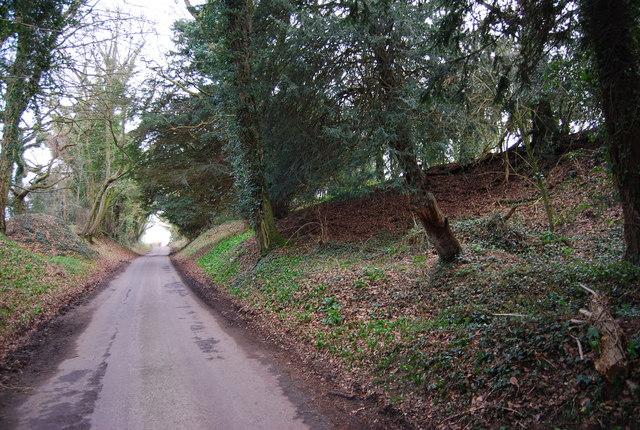 Sunken lane descending to Priors Dean