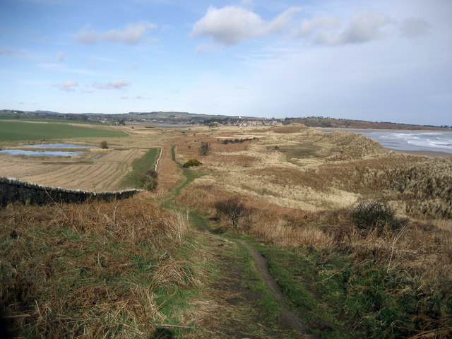 View northwards to Alnmouth