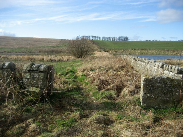 Bridleway to A.1068