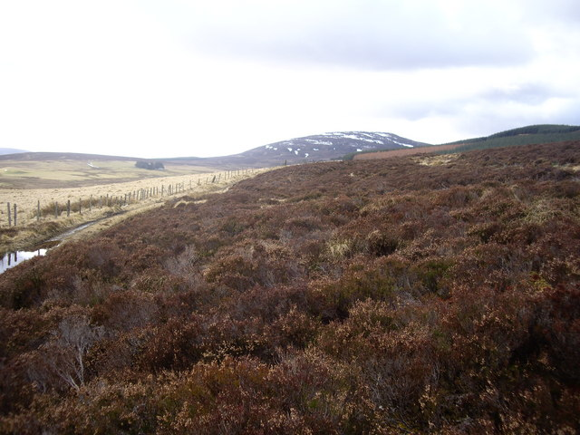 View towards Todholes from a moorland track