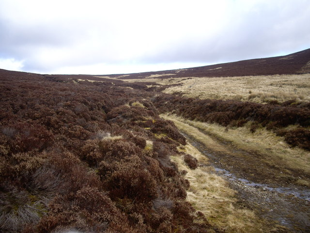 View NE from a moorland track