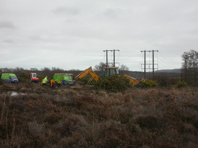 Middlebere Heath, maintenance work