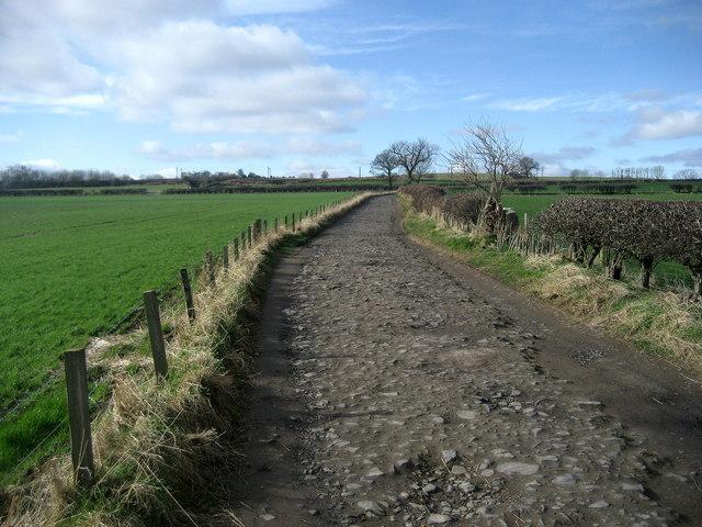 Northumberland Coast Path approaching A.1068