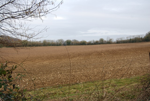 A fallow field near Priors Dean
