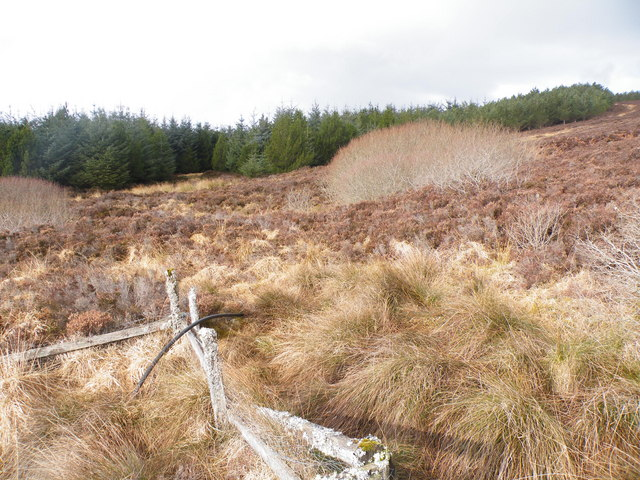 Water Supply for Achormlarie from Creagan Mora Burn