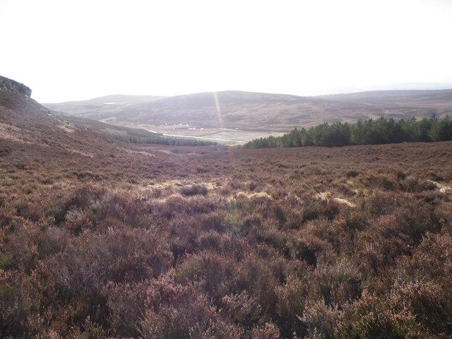 Looking past Greagan Mora Moorland above Achormlarie
