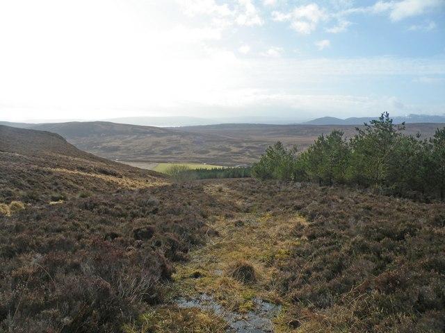 Looking South over Greagan Mora Moorland
