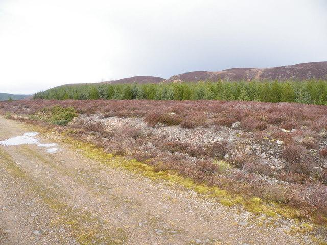Track heading towards Beinn Domhnaill