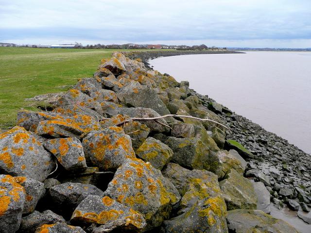 Severn shoreline