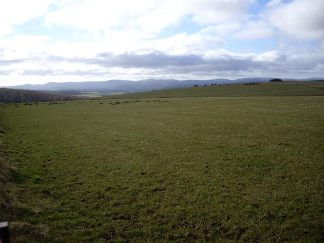 View south from near Moss-side