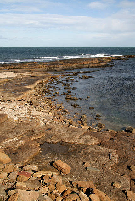 The shoreline at Lawrie's Den