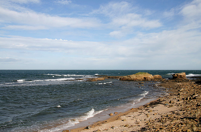 The coastline at Lawrie's Den