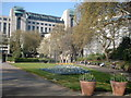 TQ3080 : Victoria Embankment Gardens by PAUL FARMER