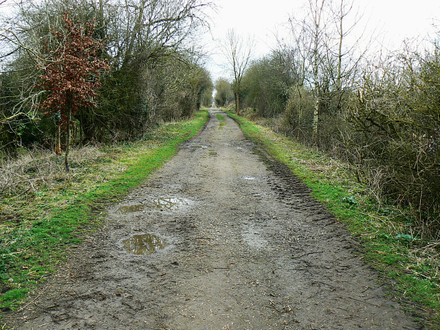 Trackbed of the Midland and South Western Railway, near Baunton