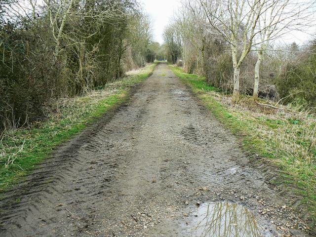 Trackbed of the Midland and South Western Railway, near Baunton
