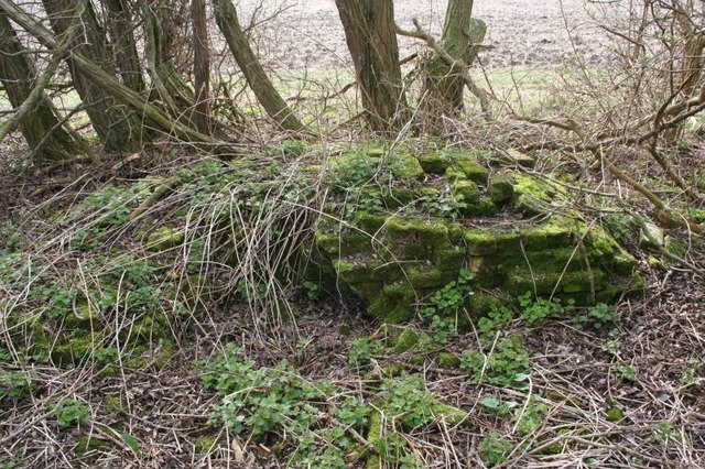 Chamber remains