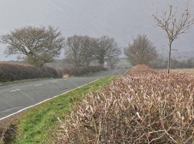 Hail storm along Bagworth Road